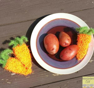 Carrot Vegetable Scrubby