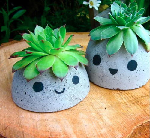 Too Cute DIY Concrete Planters