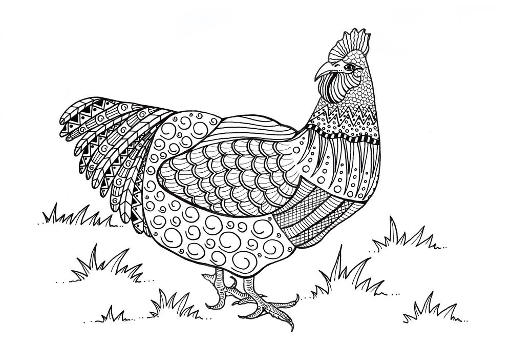 Coloring Pages For Adults Rooster : Colorful chicken adult coloring page favecrafts