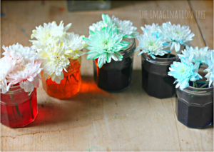 Amazing Color Changing Flowers Experiment