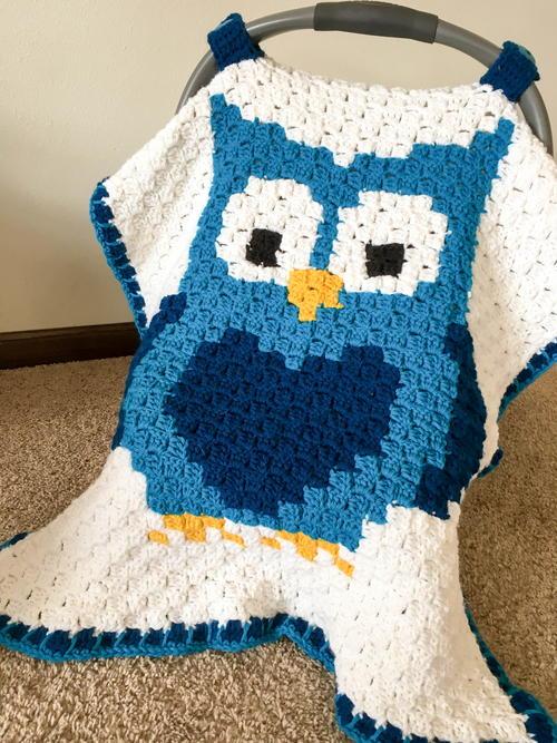 Little Owl Car Seat Canopy
