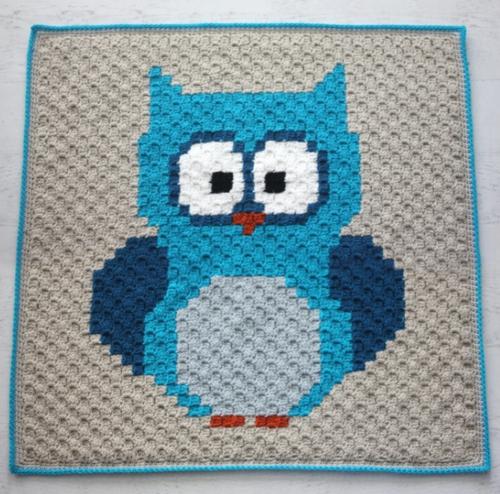 Owls Wisdom Crochet Baby Blanket Pattern
