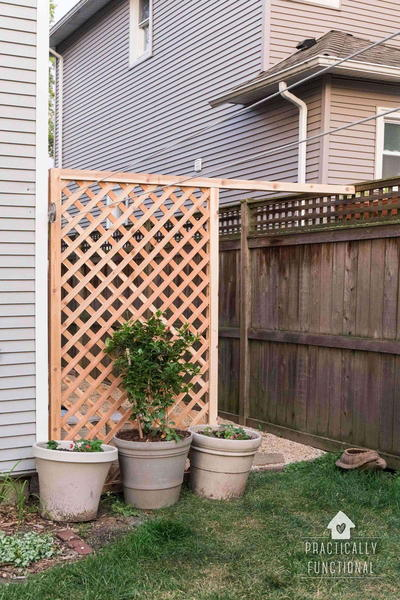 Nice and Neat Amish Trellis