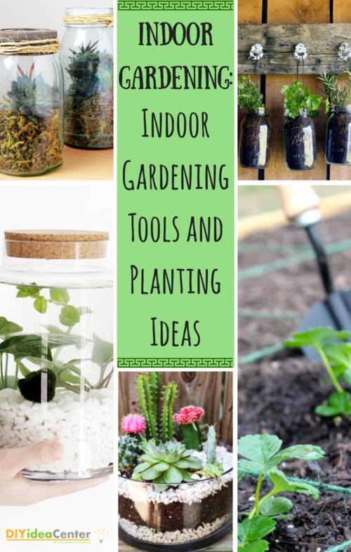 Indoor Gardening: How to Garden Indoors, Indoor Gardening Tools, and ...