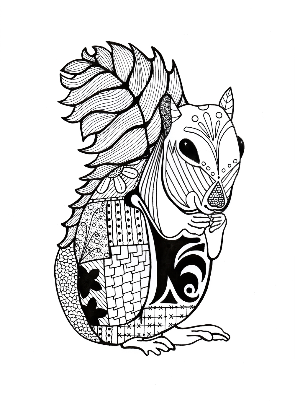 free coloring pages for squrrils - photo#5