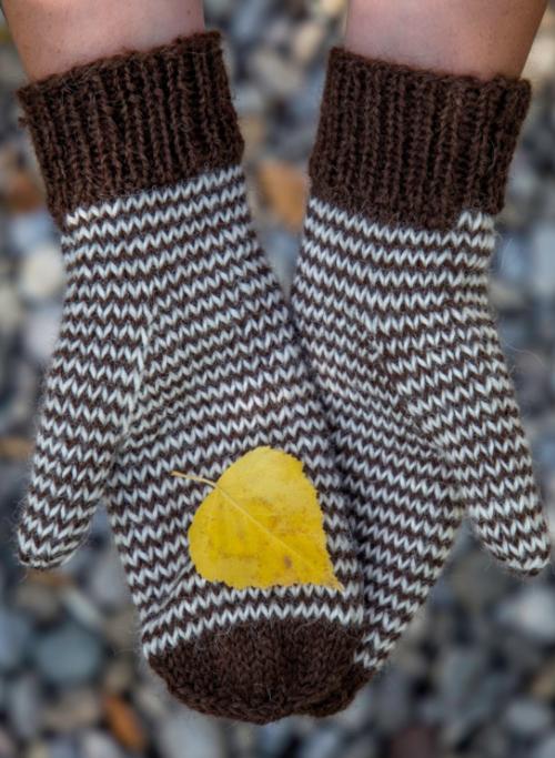 Mini Chevron Knit Mitten Pattern | AllFreeKnitting.com