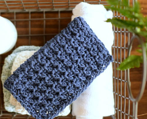 Hostess Dishcloth