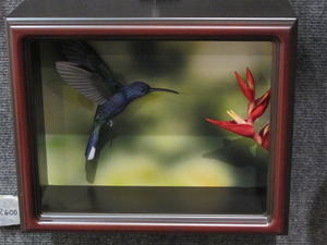 Tom Horn's Impressive Shadow Boxes
