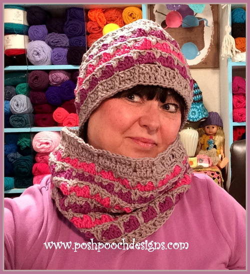 Lisa Ann Cowl and Ear Warmer Set