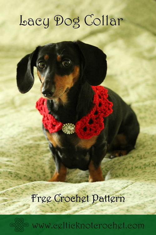Lacy Dog Collar Allfreecrochet
