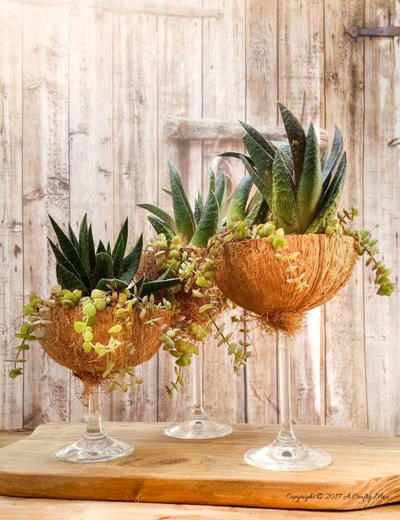Recycled Wine Glass Planters