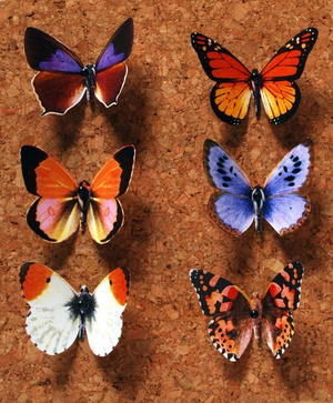 Butterfly Push Pin Paper Craft