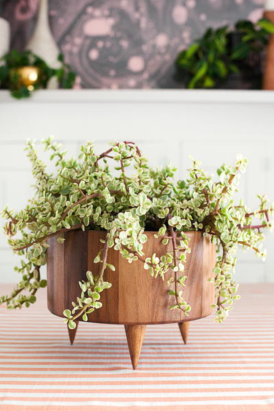 Upcycled Wooden Planter