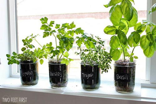 indoor herb garden kit diy indoor herb garden diyideacenter 28782