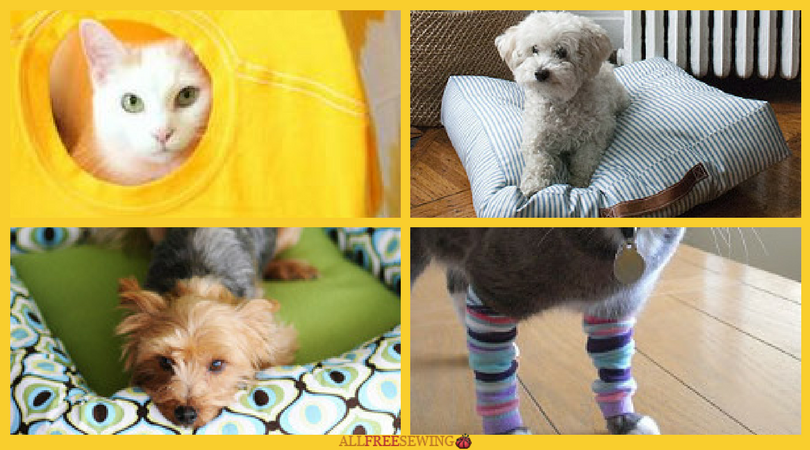 16 Pet Sewing Patterns That Are Dog Gone Purrfect Allfreesewing