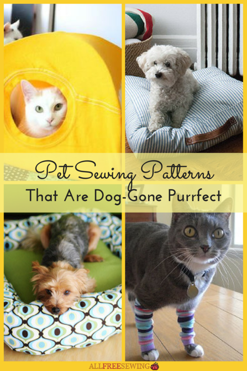 16 Pet Sewing Patterns That Are Dog-Gone Purrfect | AllFreeSewing.com