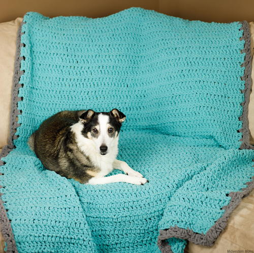 Crochet Dog Blanket / Couch Cover