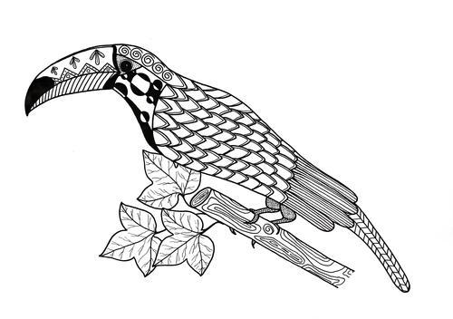 Toucan Coloring Page Favecrafts Com Coloring Pages Hippo Toucan Coloring  Page