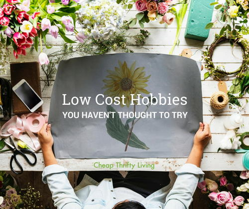 25 Low Cost Hobbies You Havent Thought to Try