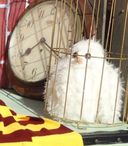 Knit Harry Potter Owl