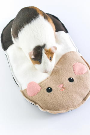 Guinea Pig Pillow Bed Pattern