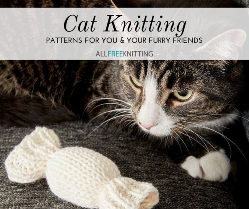 Cat Knitting 15 Patterns For You And Your Feline Allfreeknitting