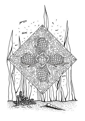 Coral Reef Slice Of Life Adult Coloring Page