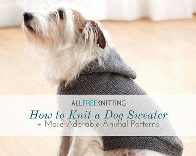 How To Knit A Dog Sweater 10 More Adorable Animal Patterns