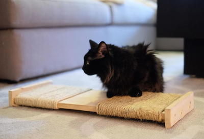 Diy cat box cabinet evanandkatelyncom Wood Diy Cat Scratching Post Arm The Animals Diy Cat Scratching Post Cheapthriftylivingcom